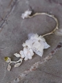 3DriedFlower EarCuff